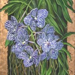 orchid_10