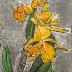 orchid_3