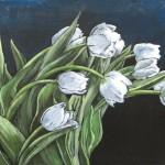 white_tulips_4